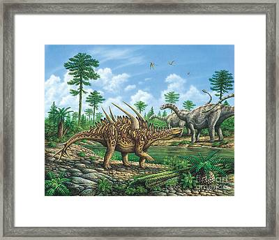 Huayangosaurus And Shunosaurus Framed Print by Phil Wilson