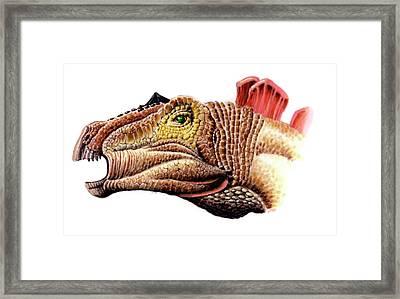 Huayangosaurus Dinosaur Framed Print