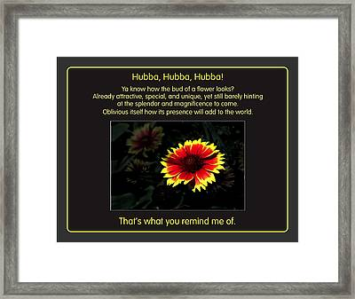 Hubba Hubba Framed Print by Mike Flynn