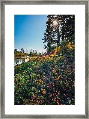 Huckleberry Afternoon Framed Print