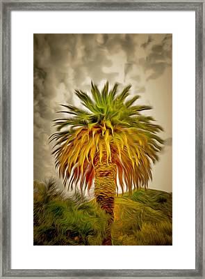 Huge Palm Dark Skies Framed Print by Barbara Snyder