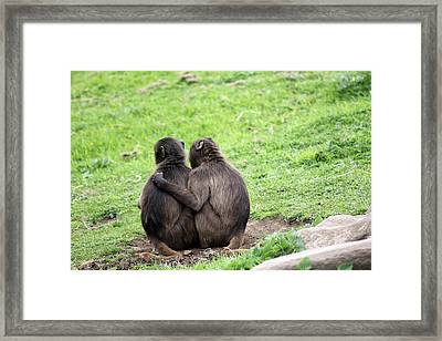 Hugs Framed Print by Mancini Young