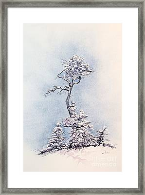 Hula Tree Framed Print by Dan Riddle