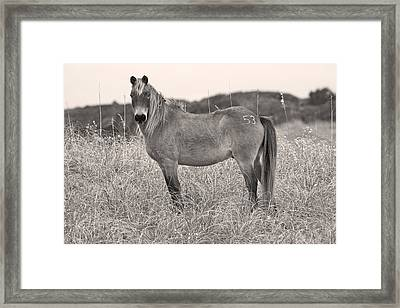 Human Awareness  Framed Print