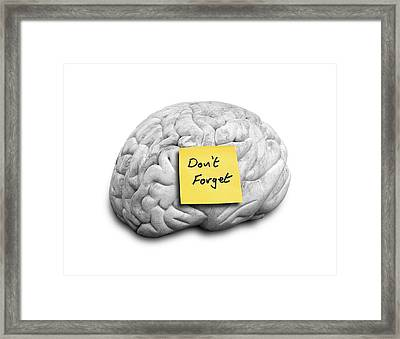 Human Brain With An Adhesive Note Framed Print