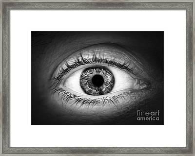 Human Eye Framed Print by Elena Elisseeva