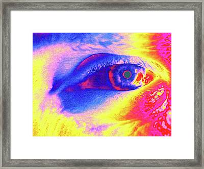 Human Eye Framed Print by Larry Berman