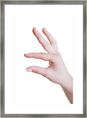 Human Hand In A Measuring Gesture Framed Print