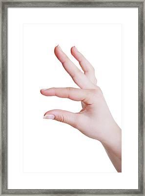 Human Hand In A Measuring Gesture Framed Print by Wladimir Bulgar