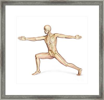 Human Male In Athletic Dynamic Posture Framed Print by Leonello Calvetti