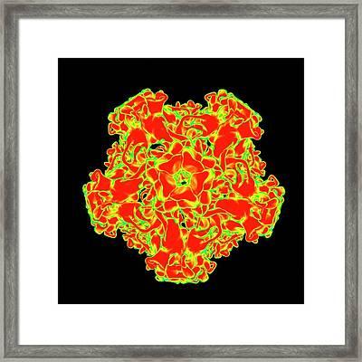 Human Papillomavirus Framed Print
