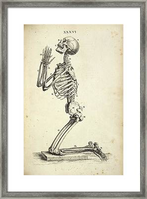 Human Skeleton Praying Framed Print by British Library