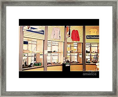 Humane Society Cat Penthouses Framed Print
