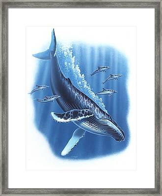 Humback And Dolphins Framed Print by JQ Licensing