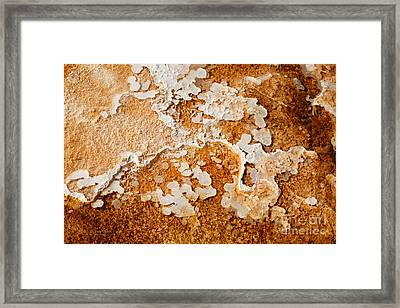 Humble Beginnings Framed Print by Beve Brown-Clark Photography