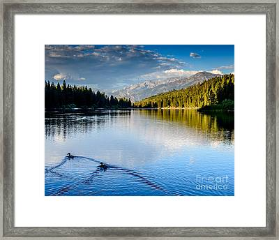 Hume Lake Evening Framed Print