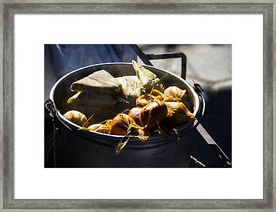 Humitas Bolivia Framed Print by For Ninety One Days