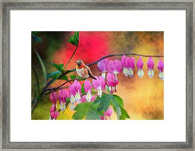 Hummer With Heart Framed Print by Lynn Bauer