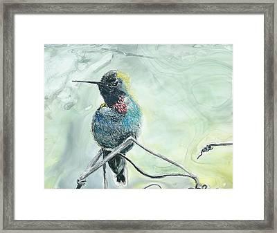 Humming Bird Framed Print by Donna Turbyfill