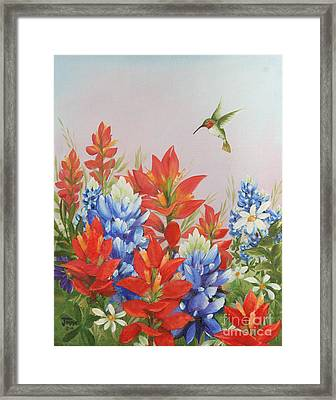Humming Bird In Wildflowers Framed Print