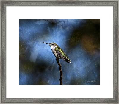 Framed Print featuring the digital art Hummingbird Beauty by J Larry Walker