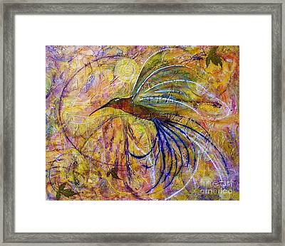Hummingbird Don't Fly Away Framed Print by Jane Chesnut