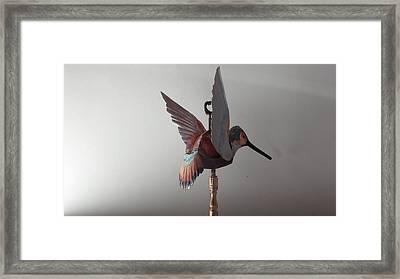 Hummingbird Finial Framed Print by Jessica Dietz