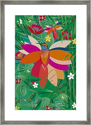 Hummingbird - Limited Edition  Of 10 Framed Print