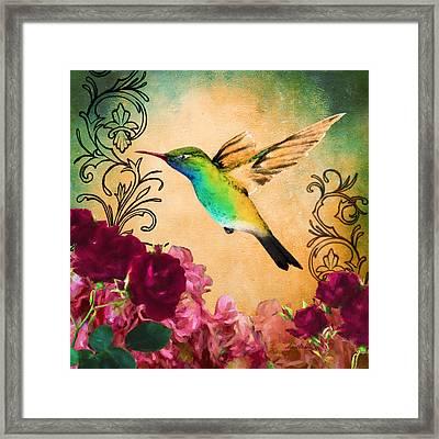 Hummingbird I Framed Print