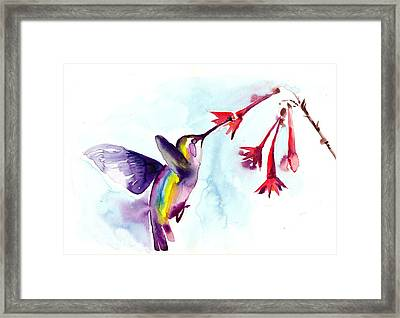 Hummingbird In Red Flowers Watercolor Framed Print