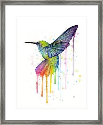 Hummingbird Of Watercolor Rainbow Framed Print