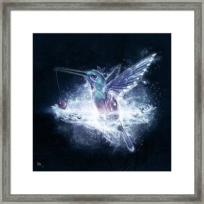 Hummingbird Print Framed Print by Cameron Gray