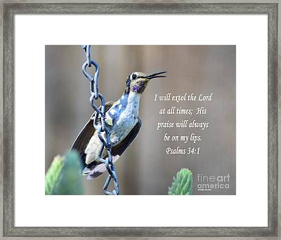 Hummingbird Scripture Framed Print by Debby Pueschel