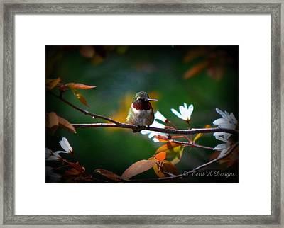 Hummingbird Framed Print by Terri K Designs