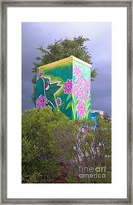 Hummingbird Traffic Signal Box Framed Print by Genevieve Esson