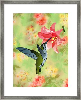 Hummingbird With Pink Lily Against Floral Fabric Framed Print
