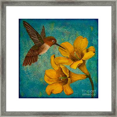 Hummingbird With Yellow Jasmine Framed Print