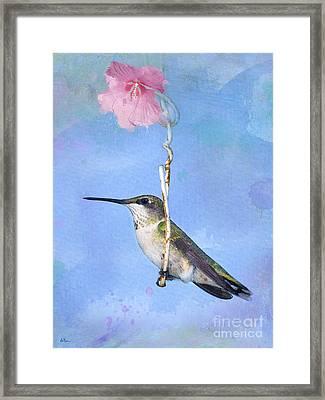 Hummingbirds Like To Swing Framed Print