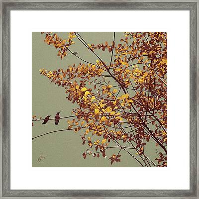 Hummingbirds On Yellow Tree Framed Print
