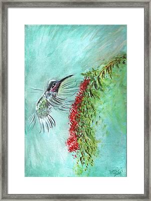 Hummingbird Bird Framed Print by Remy Francis
