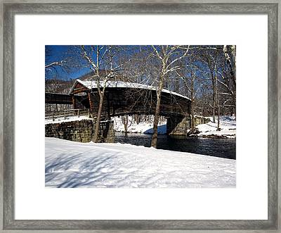 Humpback In The Winter Framed Print by Cathy Shiflett
