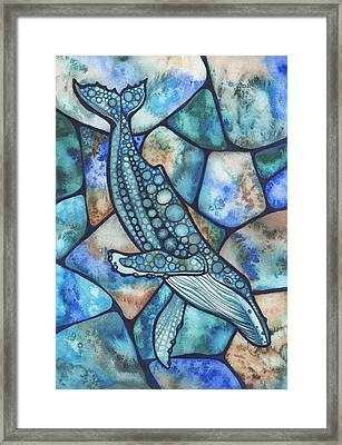Humpback Whale Framed Print by Tamara Phillips