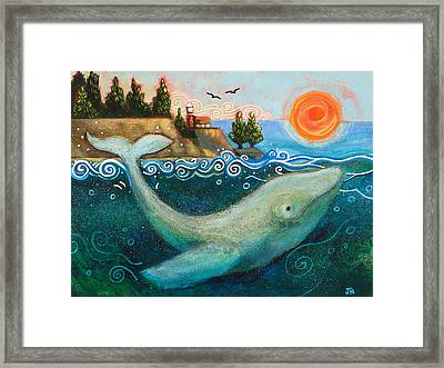 Humpback Whales In Santa Cruz Framed Print by Jen Norton