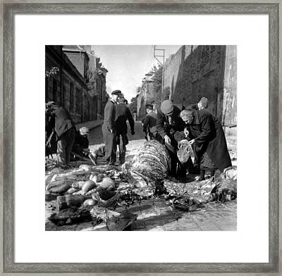 Hungary Civilians Butcher A Dead Horse Framed Print by Everett
