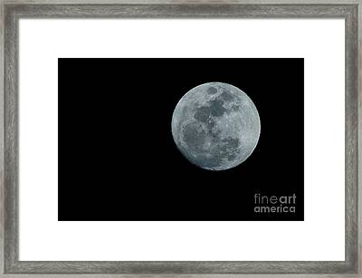 Hunger Moon Framed Print by Lynda Dawson-Youngclaus