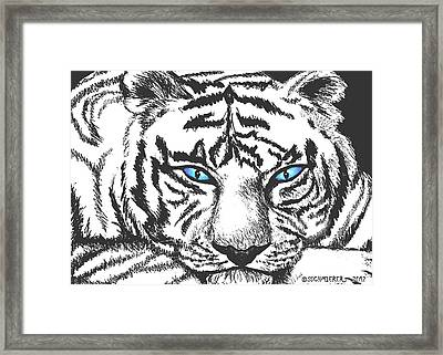 Hungry Eyes Framed Print by Sophia Schmierer