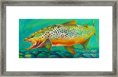 Hungry Spots Framed Print