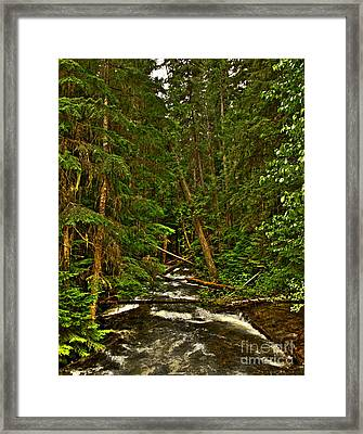 Hunt Creek Idaho Framed Print