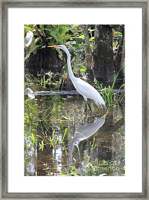 Hunter Framed Print by Carey Chen