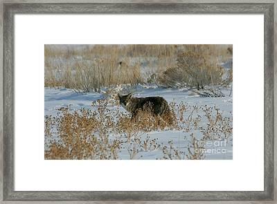 Hunter In The Snow Framed Print